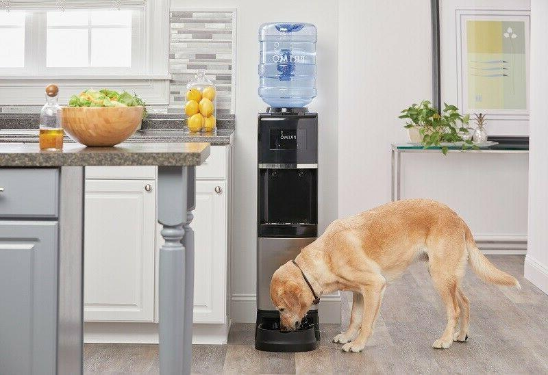 Water Cooler Cold H2O Dispenser with Drinking Electric